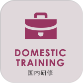 dmestic training